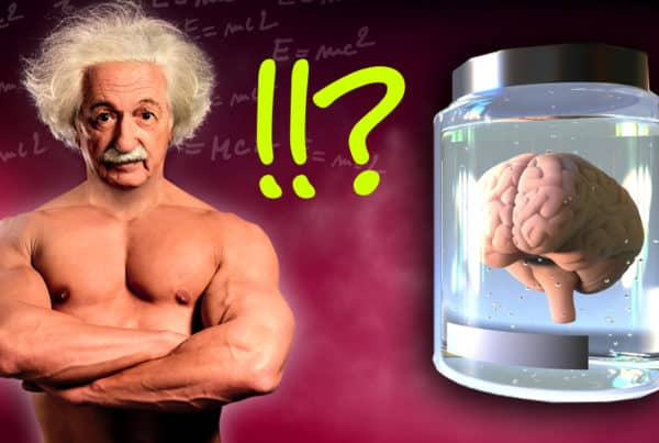 Einstein supplements, einsteins supplement regime, did einstein take supplements, einstein nootropics, einstein vitamin regime